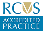 Glebe Vets In Launceston Is RCVS Accredited